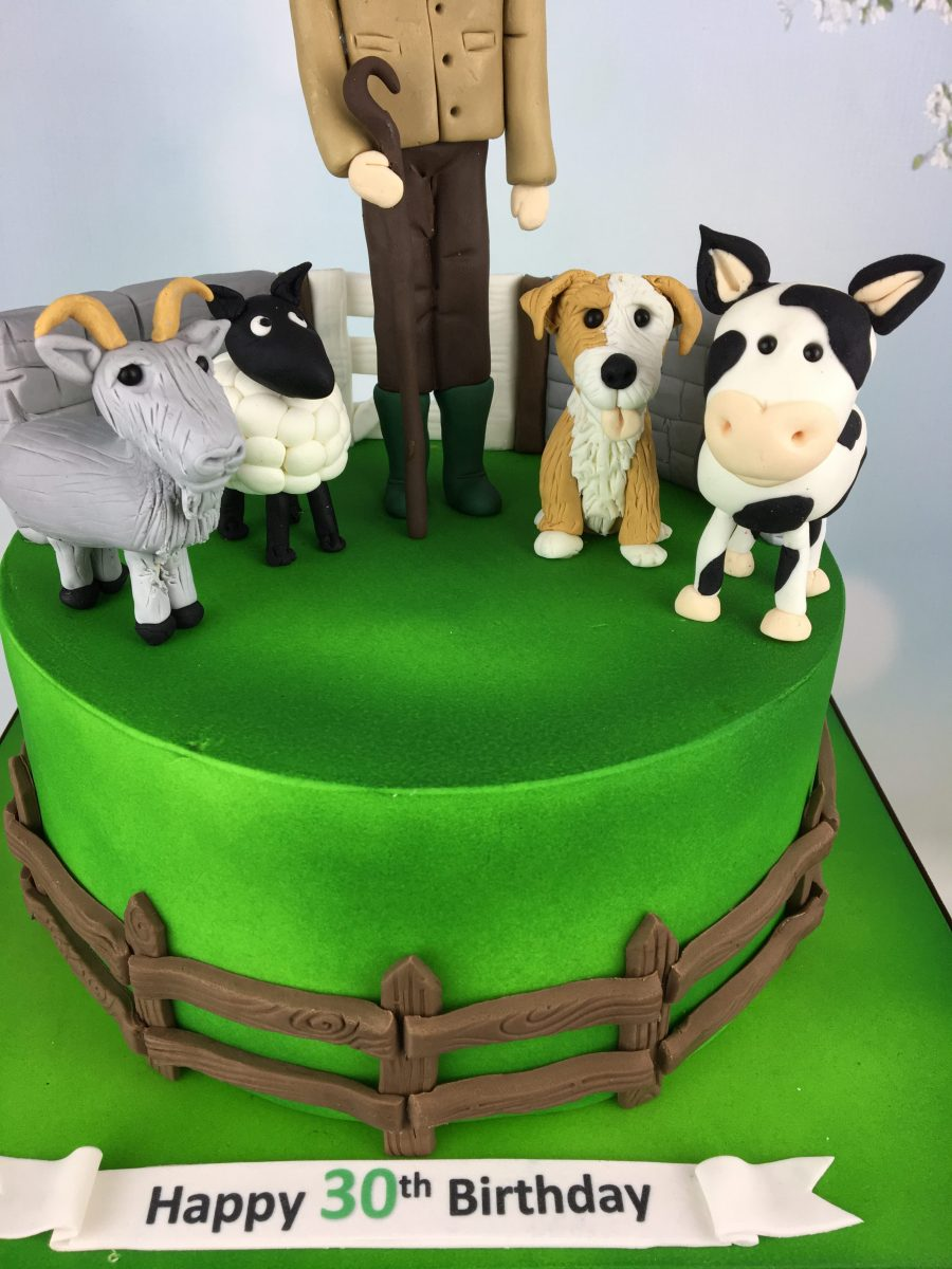 Amazing Farmer And His Animals 30Th Birthday Cake Mels Amazing Cakes Birthday Cards Printable Opercafe Filternl